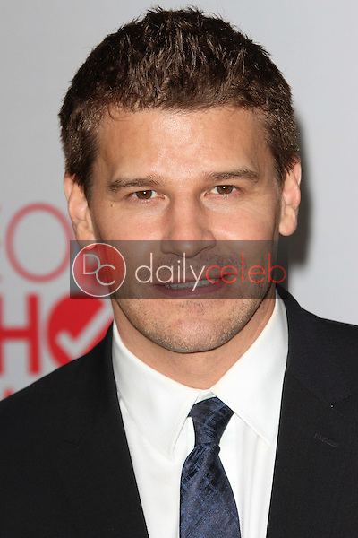 David Boreanaz<br />