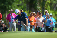 Justin Rose (GBR) chips on to 7 during Round 1 of the Zurich Classic of New Orl, TPC Louisiana, Avondale, Louisiana, USA. 4/26/2018.<br /> Picture: Golffile | Ken Murray<br /> <br /> <br /> All photo usage must carry mandatory copyright credit (&copy; Golffile | Ken Murray)