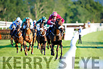 Lizzies Champ ridden by Davy Russell sprints home to win the Irish Examiner Handicap Hurdle at the Killarney Races on Monday evening