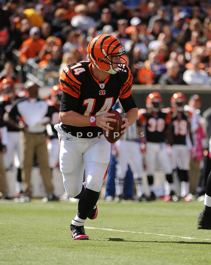 ANDY DALTON, of the Cincinnati Bengals in action during the Bengals game against the Buffalo Bills on October 2, 2011 at Paul Brown Stadium in Cincinnati, OH. The Bengals beat the Bills 23-20.
