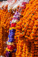 Nepal, Kathmandu.  Garlands of Marigolds, used for funerals and for temple decorations.