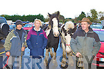 3923-3930.Bill Snelling Killorglin, Kathleen O'Donoghue Black Valley and James Trant Tralee checking out the horses at the Horse Fair in Gap of Dunloe on Sunday