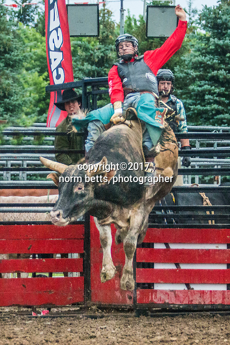 Pain Court, Ontario, Canada --- 30 June'17<br /> The RAM/Ultimate Rodeo tour stops in Pain Court, Ontario Canada<br /> <br /> <br /> photos by Norm Betts<br /> normbetts@canadianphotographer.com<br /> &copy;2017, Norm Betts, photographer<br /> 416 460 8743