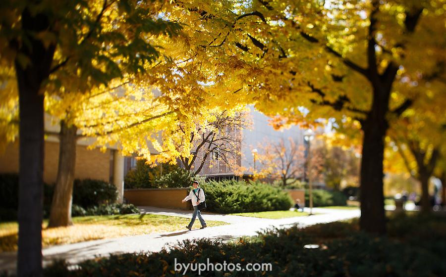 1210-62 282<br /> <br /> 1210-62 GCS Fall Campus<br /> <br /> October 30,2012<br /> <br /> Jaren Wilkey/BYU<br /> <br /> © BYU PHOTO 2012<br /> All Rights Reserved<br /> photo@byu.edu  (801)422-7322