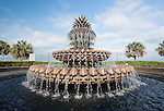 The Historic Charleston Battery - The Pineapple Fountain