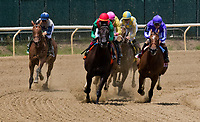 ELMONT, NY - JUNE 09: The field for the Acorn Stakes enters the stretch on Belmont Stakes Day at Belmont Park on June 9, 2018 in Elmont, New York. (Photo by Dan Heary/Eclipse Sportswire/Getty Images)