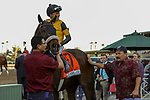 ARCADIA, CA  DECEMBER 28: #7 Hard Not to Love, ridden by Mike Smith, in the winners circle after winning the La Brea Stakes (Grade l) on December 28, 2019 at Santa Anita Park in Arcadia, CA (Photo by Casey Phillips/Eclipse Sportswire/CSM)