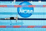 2013 W DI Swimming