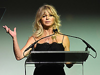 NEW YORK, NY - NOVEMBER 02: Goldie Hawn speaks onstage at the Samsung annual charity gala 2017 at Skylight Clarkson Sq on November 2, 2017 in New York City.  Credit: George Napolitano/MediaPunch