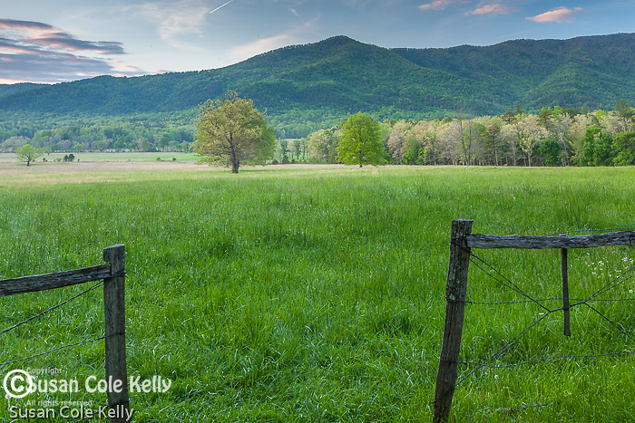 Evening light in Cades Cove, Great Smoky Mountains National Park, Tennesee, USA