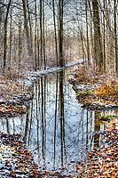 Winter at Perch Creek Nature Habitat HDR