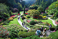 Butchart Gardens, National Historic Site of Canada,  Brentwood Bay, Vancouver Island, Canada, 200809091147, flowers, shrubs, trees, water feature, sunken garden.<br />