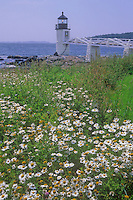 Marshall's Point Light sits at the end of a small walkway behind a field on Oxeye Daisy onshore, Knox County, Maine