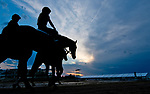 BALTIMORE, MD - MAY 15: Horses head to the track for training during Preakness Week at Pimlico Race Course on May 15, 2018 in Baltimore, Maryland (Photo by Scott Serio/Eclipse Sportswire/Getty Images)
