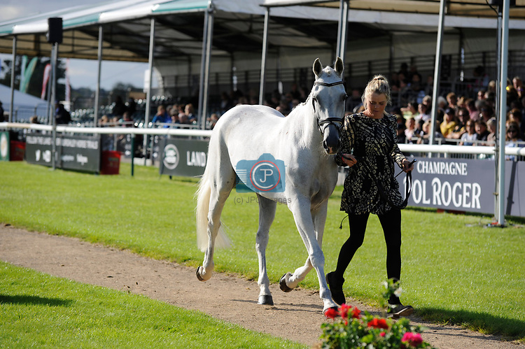 Stamford, Lincolnshire, United Kingdom, 4th September 2019, Isabel Isabel (AUS) & Feldale Mouse during the 1st Horse Inspection of the 2019 Land Rover Burghley Horse Trials, Credit: Jonathan Clarke/JPC Images