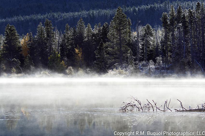 Foggy Morning at Sprague Lake.