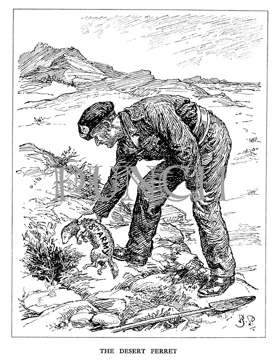 The Desert Ferret. (General Montgomery places the 8th Army ferret into a burrow  and waits to bash the German rabbit on the head with a shovel)