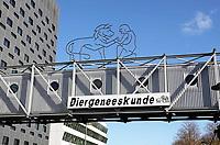 Nederland Utrecht - 2018. Science Park Utrecht. Faculteit Diergeneeskunde.  Foto Berlinda van Dam / Hollandse Hoogte
