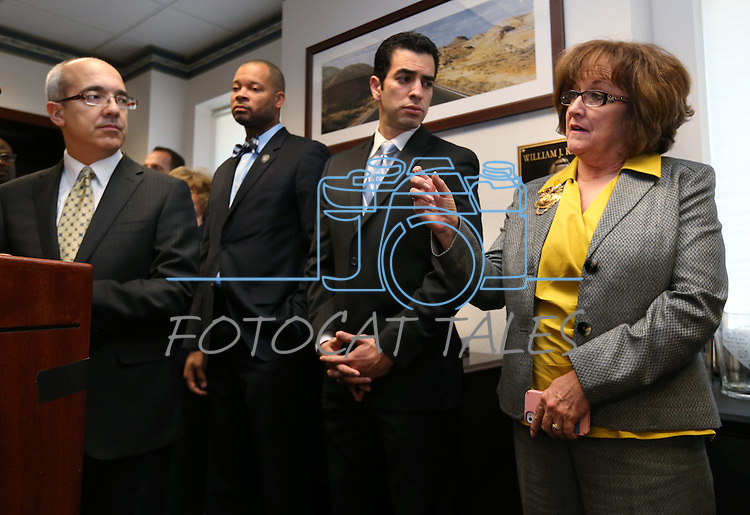 Surrounded by Nevada Senate Democrats, Sen. Debbie Smith, D-Sparks, speaks at a press conference on Tuesday, Feb. 19, 2013, at the Legislative Building in Carson City, Nev. From left, are Senators Mo Denis, Aaron Ford and Ruben Kihuen..Photo by Cathleen Allison