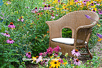 63821-206.12  Wicker chair and birdhouse  in garden with Black-eyed Susans (Rudbeckia hirta) Butterfly Bush (Buddleia davidii), Purple Coneflowers (Echinacea purpurea), Gray-headed Coneflowers (Ratibida pinnata) and Pink Bee balm (Monarda fistulosa) Marion Co. IL