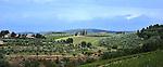 Tuscany, narrow road, Chianti region, vineyards, tall evergreens, sloped fields, stone walls, hidden chateau, Northern Italk wine country, haze, distant hills, Italyh, Northern Italy,