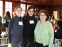 Ingrid Fritch (from left), Mahsa Lotfi-Marchoubeh and Yassaman Mirdamadi enjoy the UA Women's Giving Circle celebration.<br />