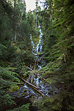 USA, Oregon, Oregon Cascades, Proxy Falls in the Wilamette National Forest in the early Fall, McKenzie Pass