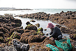 JEJU ISLAND, SOUTH KOREA, APRIL 2011:.In 1950 there were as many as 30,000 haenyo on the island, in 2003 there were only 5,650 sea women registered as divers, of whom 85% were over 50 years old..this can be the last generation of Haenyo Women in Korea..