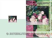 Alfredo, FLOWERS, photos, BRTOWI0706,#F# Blumen, flores