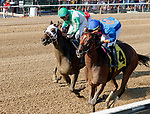 Fair Regis (no. 4) wins Race 7, Aug. 29, 2018 at the Saratoga Race Course, Saratoga Springs, NY.  Ridden by Irad Ortiz, Jr., , and trained by Robert Falcone, Jr., Fair Regis finished a neck in front of Out of Orbit(No. 3).  (Bruce Dudek/Eclipse Sportswire)