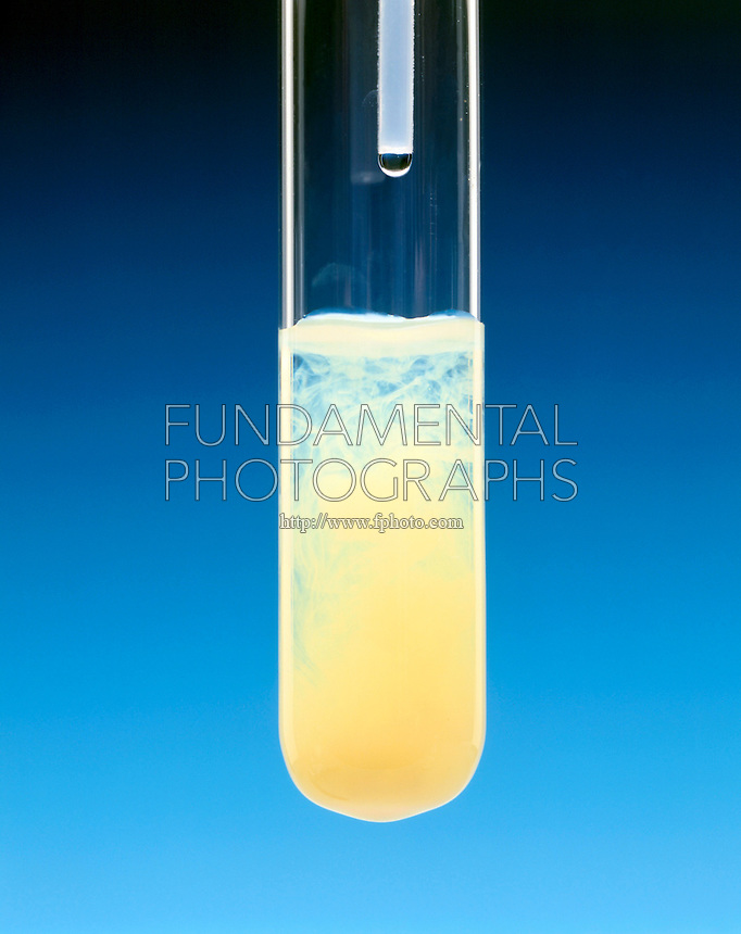 PRECIPITATION: SILVER IODIDE<br />
