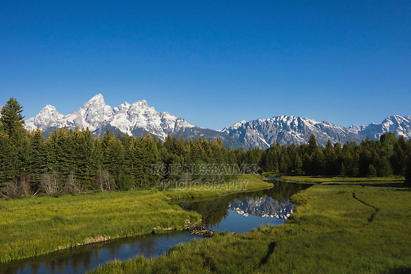 Grand Teton range and beaver dam, Snake River, Grand Teton National Park, Wyoming, USA