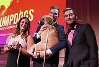 LOS ANGELES, CA - NOVEMBER 9: Lance Bass, Guests, at the 2nd Annual Vanderpump Dog Foundation Gala at the Taglyan Cultural Complex in Los Angeles, California on November 9, 2017. Credit: November 9, 2017. Credit: Faye Sadou/MediaPunch