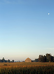 Corn Field Barn and Moon