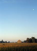 Corn Field Barn and Moon