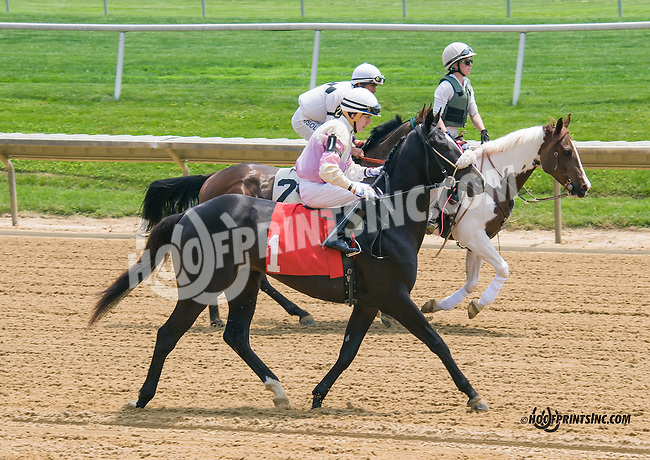 Poppy's Two Step at Delaware Park on 5/16/15