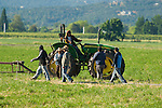 ag, agriculture, farm, ranch, country, farm workers, ranch hands