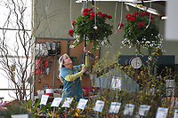 NWA Democrat-Gazette/J.T. WAMPLER Dina Butler, ordering agent, moves a plant Tuesday March 19, 2019 at White River Nursery in Fayetteville. Today ((WEDNESDAY MARCH 20)) is the first day of spring. For more information visit www.whiterivernursery.com