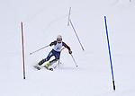 Okemo Slalom - Vermont Cup