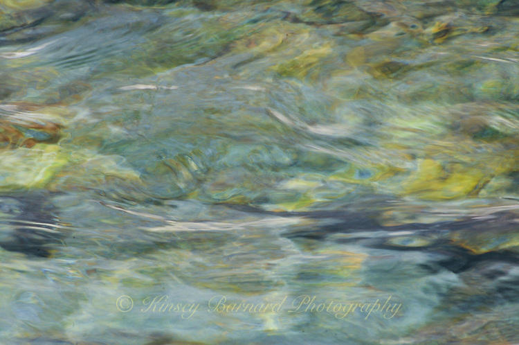 &quot;IMPRESSIONIST ENCHANTMENT&quot;<br />