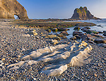 """Olympic National Park, WA <br /> Exposed rocks at low tide with the """"Hole in the Wall"""" in the distance,  Rialto Beach"""