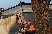Indian holy man sits on his cot at Pushkar fair ground. Rajasthan, India.