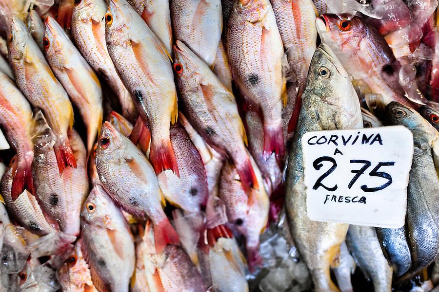 Fresh corvina fish for sale are seen at Mercado de Mariscos seafood and fish market in Panama City, Panama, 1 February 2015.