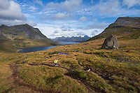 Female hiker hiking trail above Selfjord, Lofoten Islands, Norway