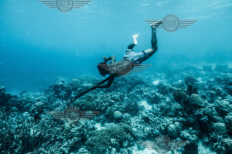 Dafrin Ambotang, 35, dives for fish near his village in the Togean islands, Indonesia. (Photo: Aurélie Marrier d'Unienville)