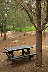 Israel, Western Samaria, a picnic site at Shoham forest park