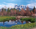 THE TETONS AND SNAKE RIVER TRIBUTARY<br /> GRAND TETON NATIONAL PARK, WYOMING