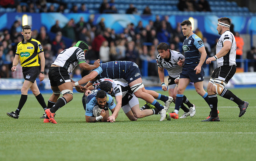 Cardiff Blues' Willis Halaholo is tackled by Zebre's Carlo Canna<br /> <br /> Photographer Ashley Crowden/CameraSport<br /> <br /> Guinness PRO12 Round 21 -  Cardiff Blues and Zebre Rugby - Friday April 28 2017 - Cardiff Arms Park - Cardiff<br /> <br /> World Copyright &copy; 2017 CameraSport. All rights reserved. 43 Linden Ave. Countesthorpe. Leicester. England. LE8 5PG - Tel: +44 (0) 116 277 4147 - admin@camerasport.com - www.camerasport.com