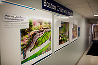 Architectural renderings show green space that will be included in the planned expansion at Boston Children's Hospital, seen here in Boston, Mass., on Mon., June 13, 2016. Plans for expansion at the hospital would remove much of the Prouty Garden space to allow for, among other things, the expansion of the Neonatal Intensive Care Unit. The garden is a half-acre of green space at the hospital that many in the hospital community hold dear.
