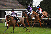 Winner of The That Friday-Ad Feeling Novices' Hurdle   Calva D'Auge (1) ridden by Harry Cobden and trained by Paul Nicholls during Horse Racing at Plumpton Racecourse on 10th February 2020
